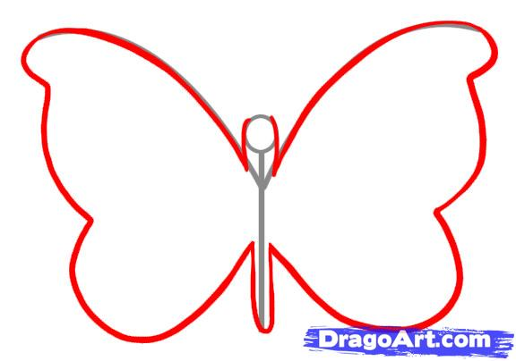 576x404 Draw A Simple Butterfly, Step