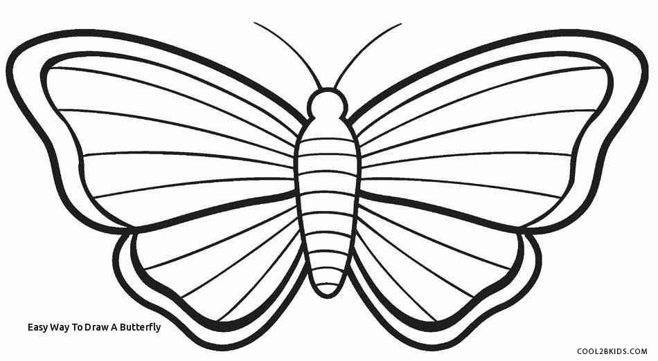 950x522 how to draw a butterfly easy way to draw a butterfly butterfly