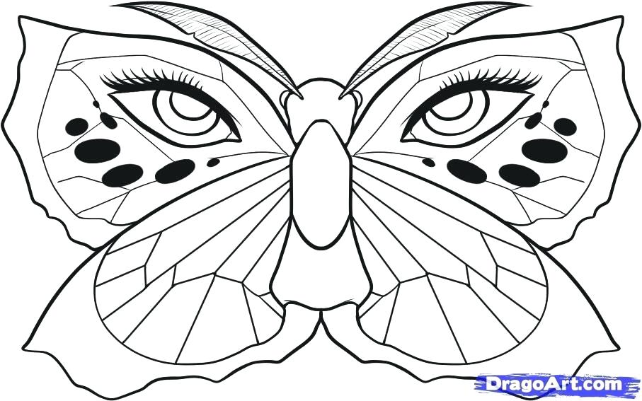 907x567 How To Draw A Butterfly Easy