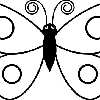 336x336 Butterfly Drawing Easy Step
