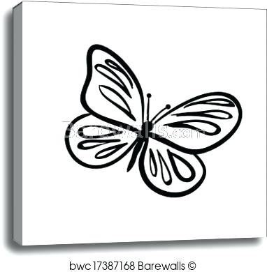 382x390 butterfly sketch butterfly sketch butterfly tattoo drawing video