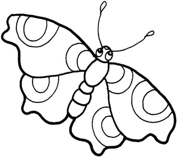 592x525 butterflies drawings butterfly drawings butterfly butterfly