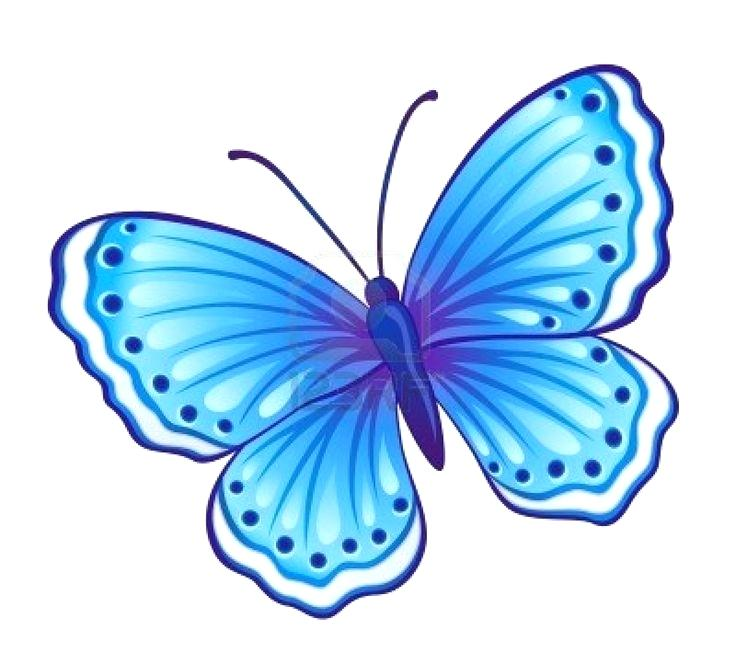 736x664 Butterflies Drawings