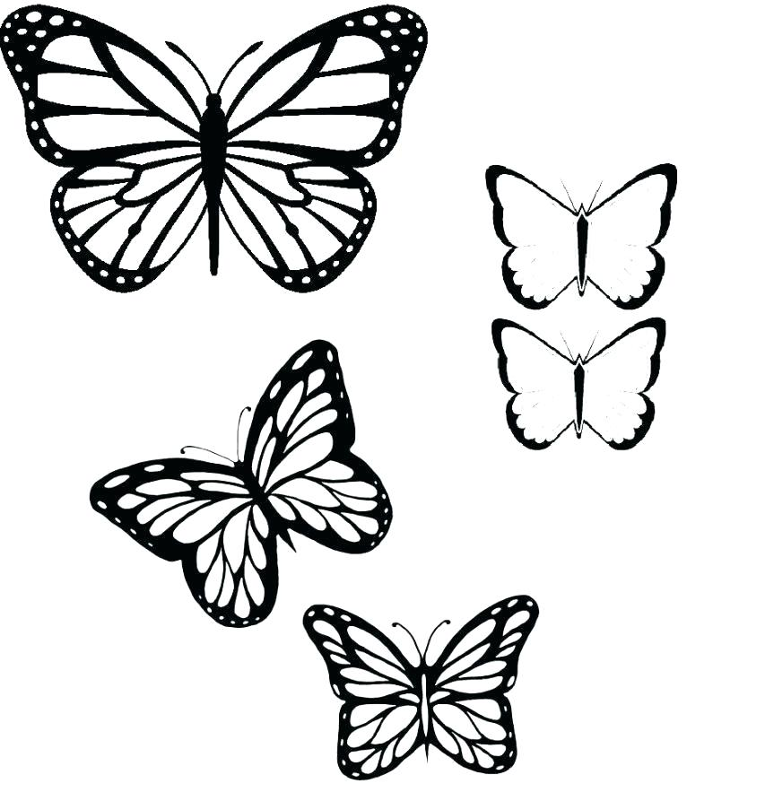 863x893 butterfly wing outline butterfly wing quote
