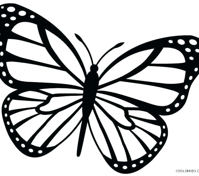 678x600 outlines of butterflies butterfly outlines butterfly outlines x