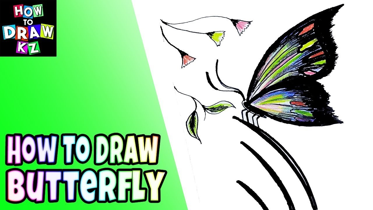 1280x720 How To Draw Butterfly For Kids