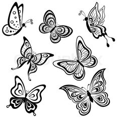 236x236 Huge Collection Of 'butterflies Drawing' Download More Than