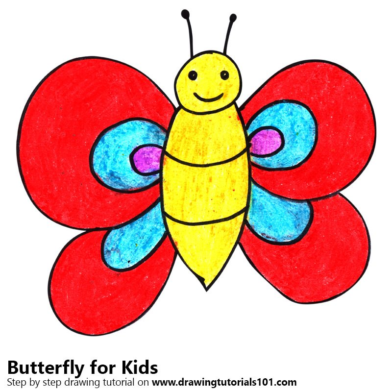 800x800 Learn How To Draw A Butterfly For Kids