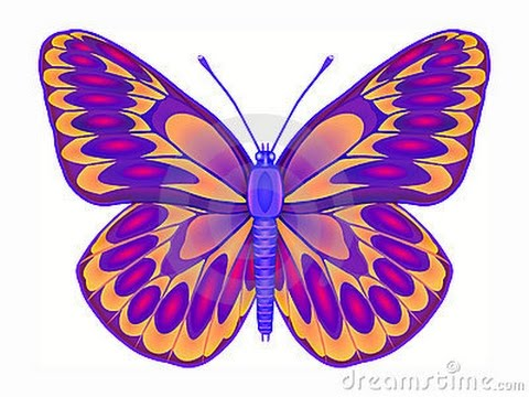 480x360 How To Draw Butterfly
