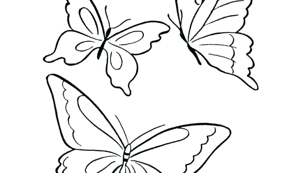 1024x600 Butterfly Coloring