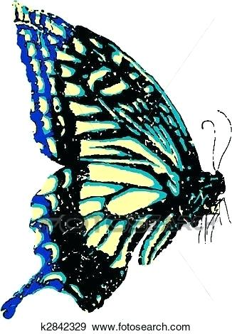 326x470 Flying Butterfly Drawings Flying Butterfly Tattoo Outline