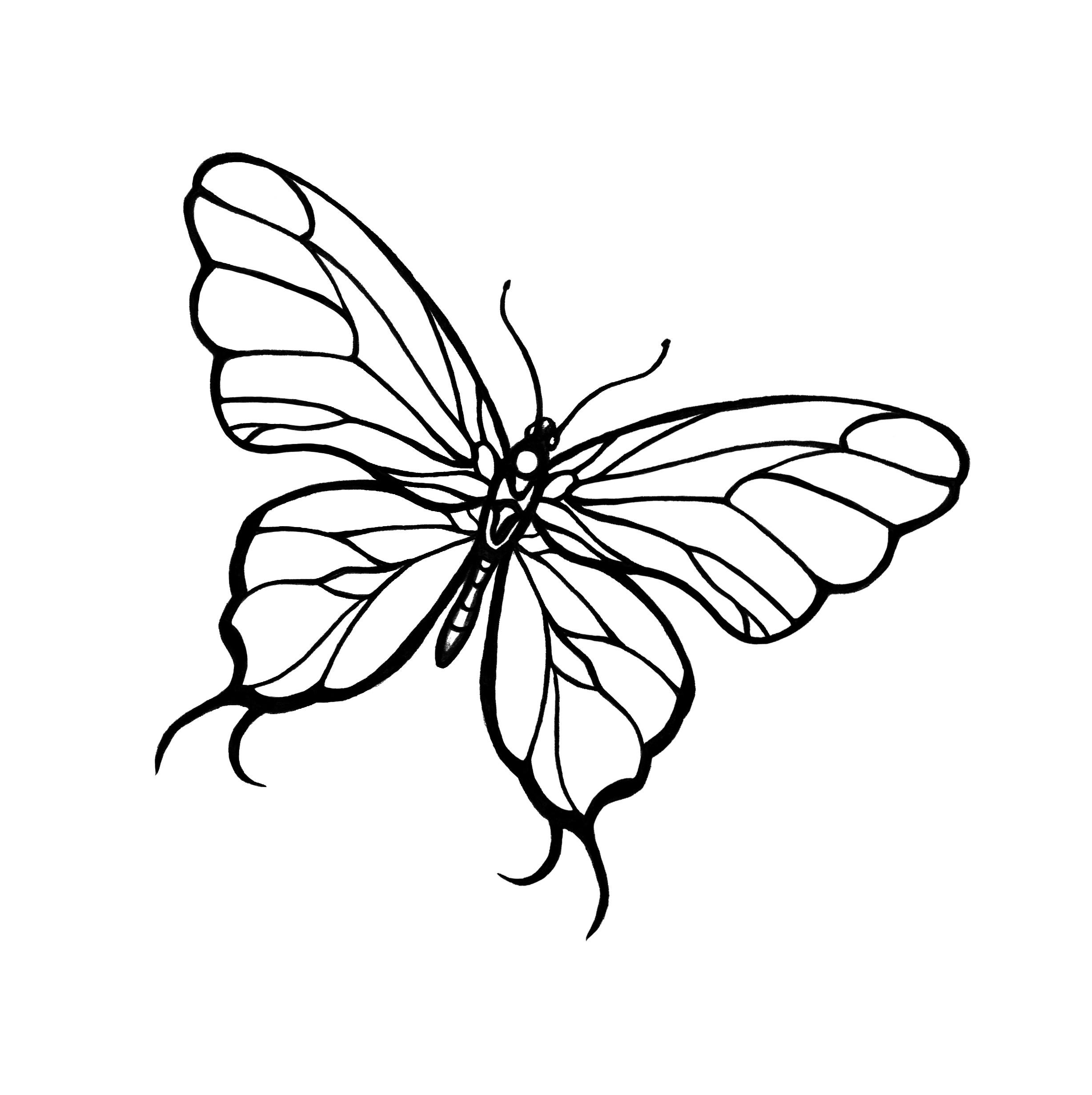 2456x2464 Simple Butterfly Drawing Line Tattoo Inspirati