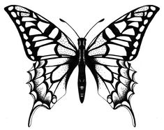 235x186 Best Flying Butterfly Tattoo Drawings Images Butterflies