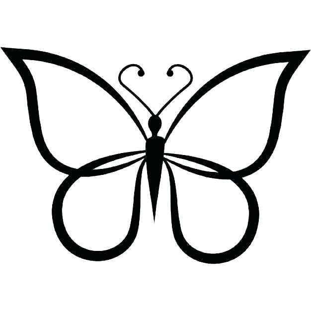 626x626 butterfly outline drawing butterfly template to print butterfly