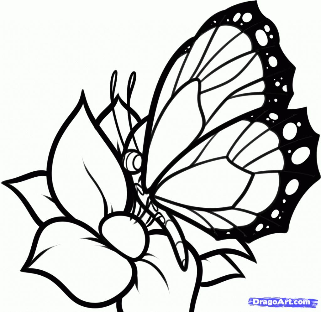 Butterfly Flower Drawing