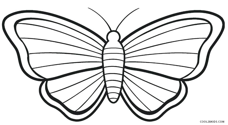 950x522 Coloring Pages Butterfly