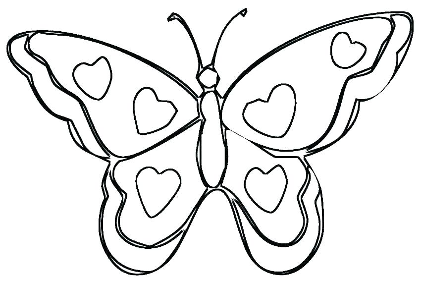 850x567 Butterfly Coloring Pages Printable Book Free Palmarosa