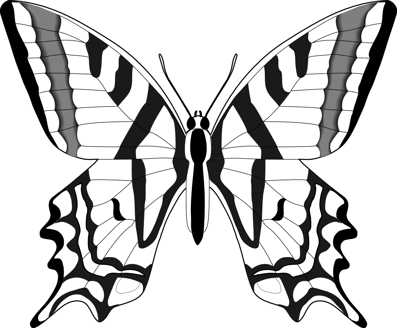 1331x1099 Butterfly Line Drawing Transparent Png Clipart Free Download