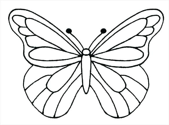 585x432 Butterfly Outline Drawing Butterfly Outline Coloring Pages Monarch
