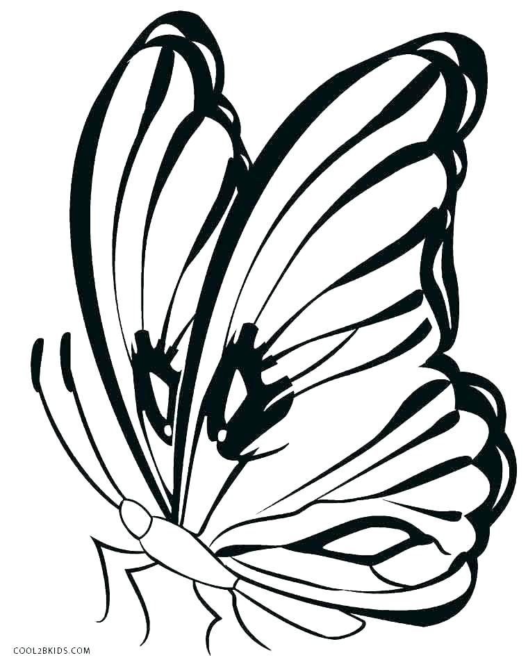 760x950 Coloring Pages Draw Butterflies Beautiful Spiral Butterfly Home
