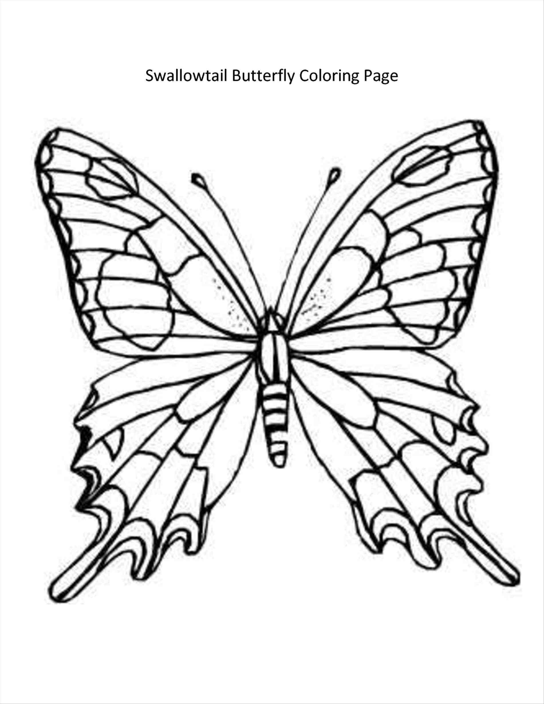 1900x2458 Cute Butterfly Coloring Pages Refrence Line Drawing A Butterfly