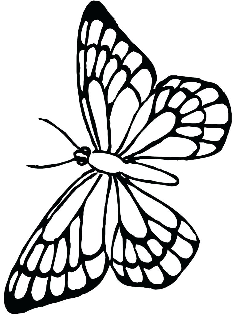 768x1024 Monarch Butterfly Line Drawing Awesome Monarch Butterfly Coloring