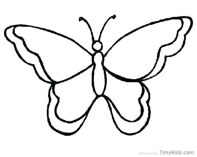 640x510 Butterfly Outline Drawing Free Printable Butterfly Templates High