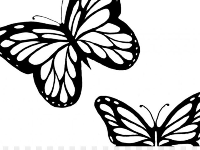 640x480 Monarch Butterfly Clipart Butterfly Drawing