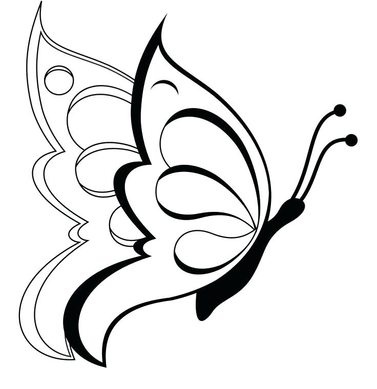 736x760 How To Draw An Easy Butterfly