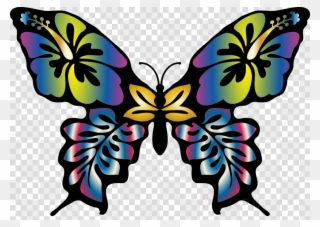 320x227 Scraps Butterfly Drawing, Butterfly