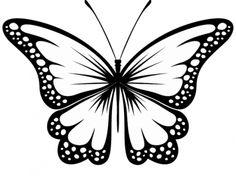 236x176 Best Butterfly Drawing Butterfly Realistic