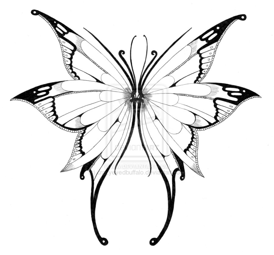 900x839 Butterfly Wings Drawing