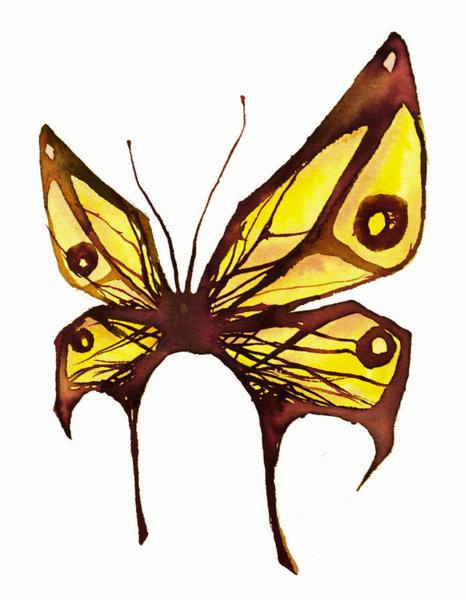 466x600 Butterfly Wings Drawings Fine Art America