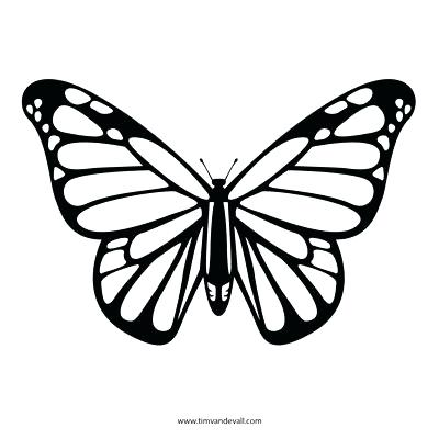 400x400 Large Butterfly Template Cut Out Templates Design Wing Pattern