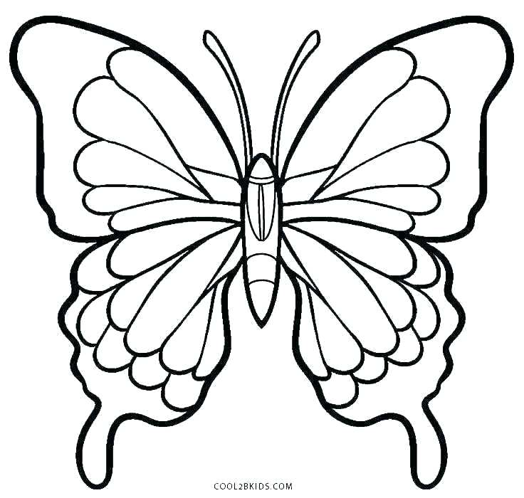 736x700 Monarch Butterfly Coloring Coloring