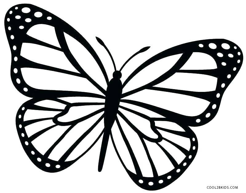 Butterfly outline monarch. Collection of clipart free