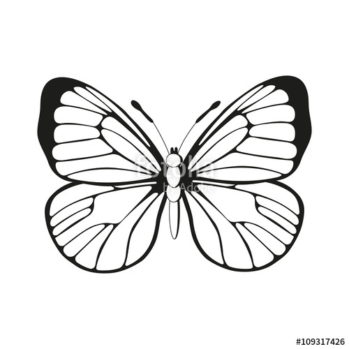 500x500 Silhouette Butterfly Black And White Butterfly Pattern Vector