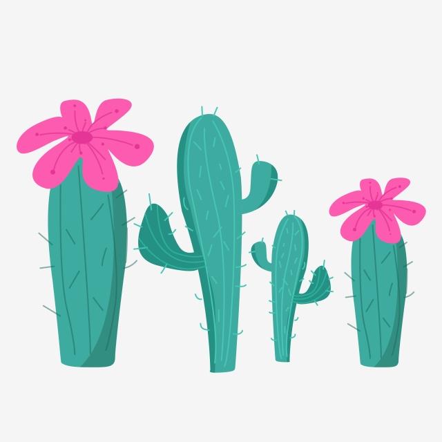 640x640 cactus cartoon hand drawn illustration cactus cartoon hand drawn