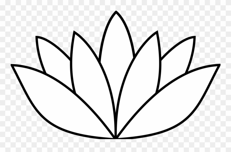 Cactus Flower Drawing   Free download on ClipArtMag  Cactus Flower Outline