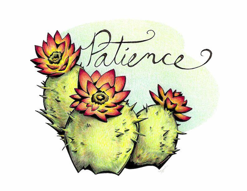 792x612 inspirational flower cactus inspirational artwork, floral art
