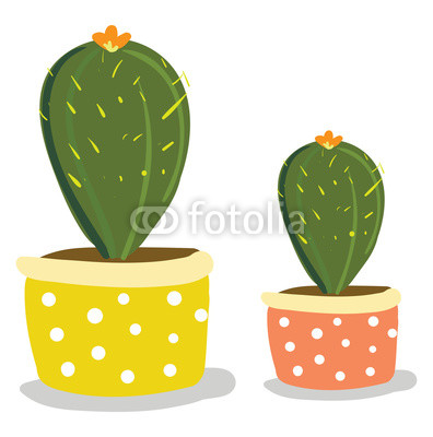 396x400 Two Cactus Plants With Flowers In Beautiful Decorated Pots