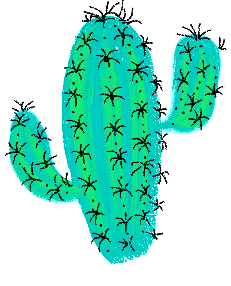 796x984 Cactus Drawing Desert Sticker Green Plant Spins Waterco