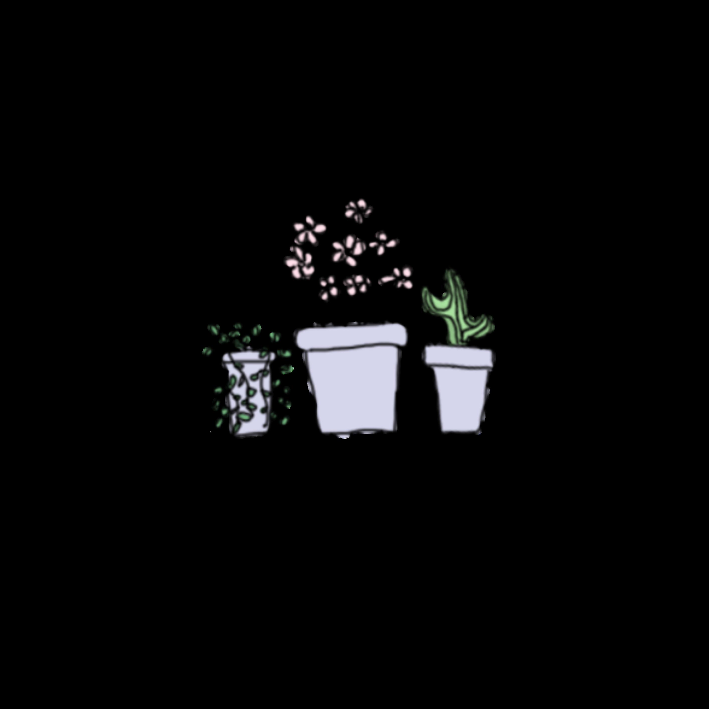 2828x2828 Plants Cactus Succulent Drawing Pastel Cute Aesthetic