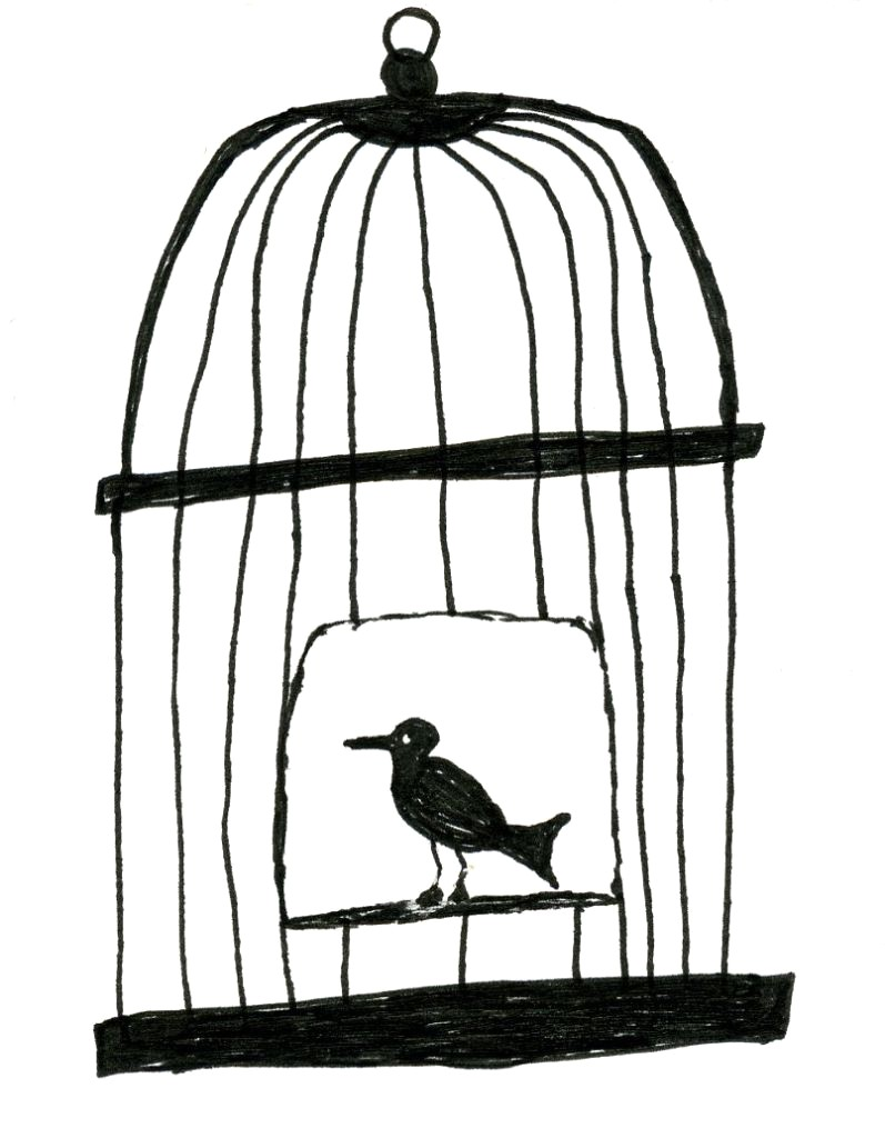 Cage Drawing