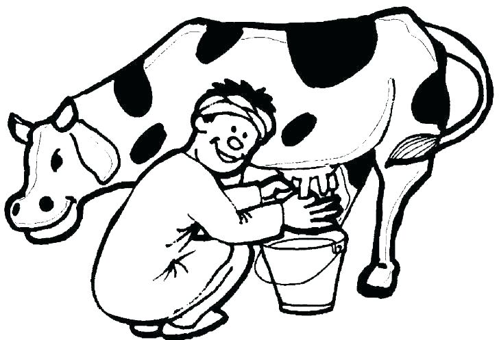 728x497 easy to draw cartoon cow cartoon cow drawing cow and calf coloring