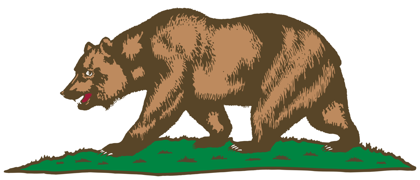 1749x750 california grizzly bear california grizzly bear drawing cc0