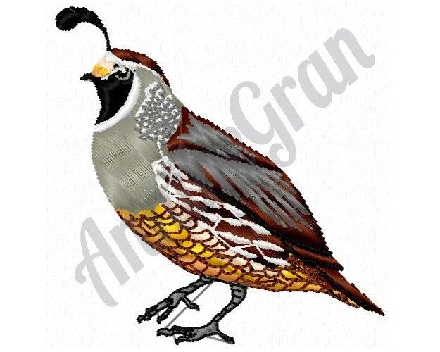 625x500 bird machine embroidery design california quail machine etsy
