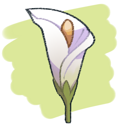 400x400 drawing lilly calla lily huge freebie! download for powerpoint