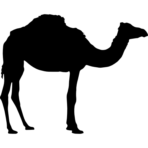 512x512 camels drawing shadow huge freebie! download for powerpoint