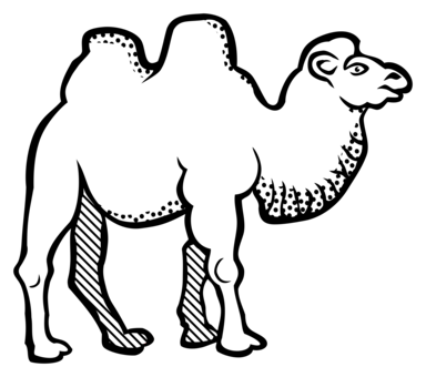 384x340 drawing camels pen transparent png clipart free download